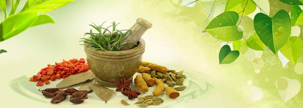 Ayurveda | History | list of Ayurvedic Therapy
