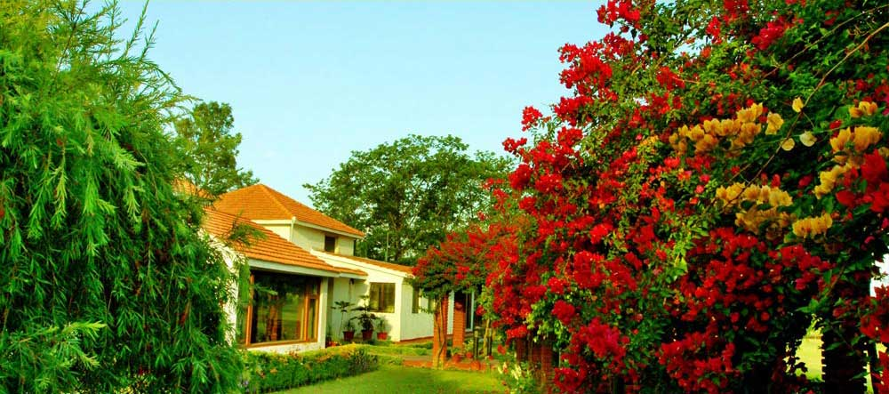 NaturOville at Dehradun | Best Nature Cure