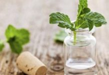 10 Incredible Uses of Peppermint Oil for Health and Beauty