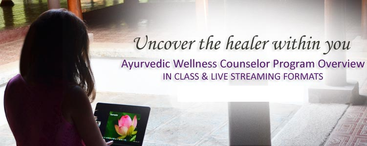 Kerala Ayurveda Academy & Wellness Center in Seattle, WA – USA